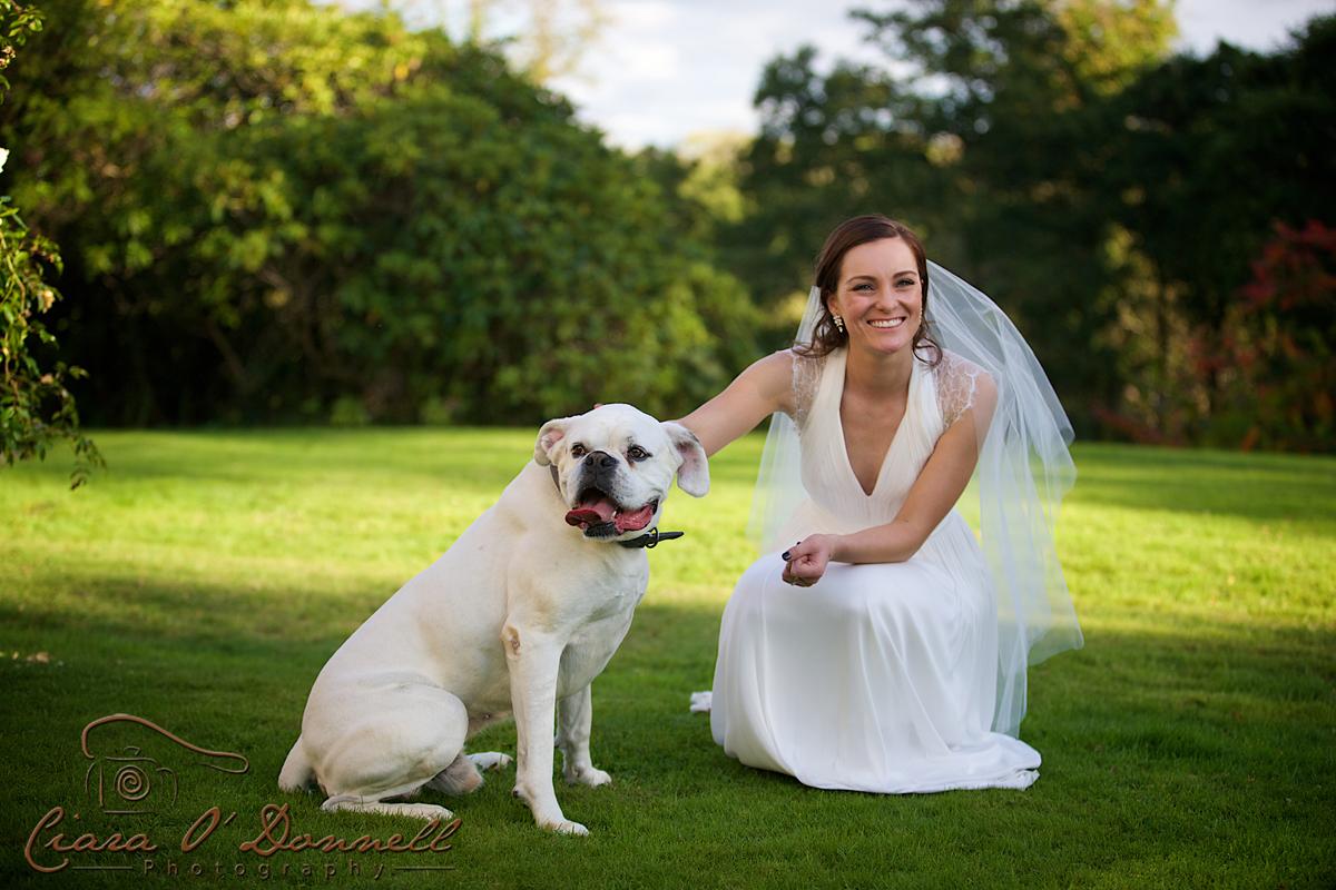 Wedding-Beaufort Bride & dog