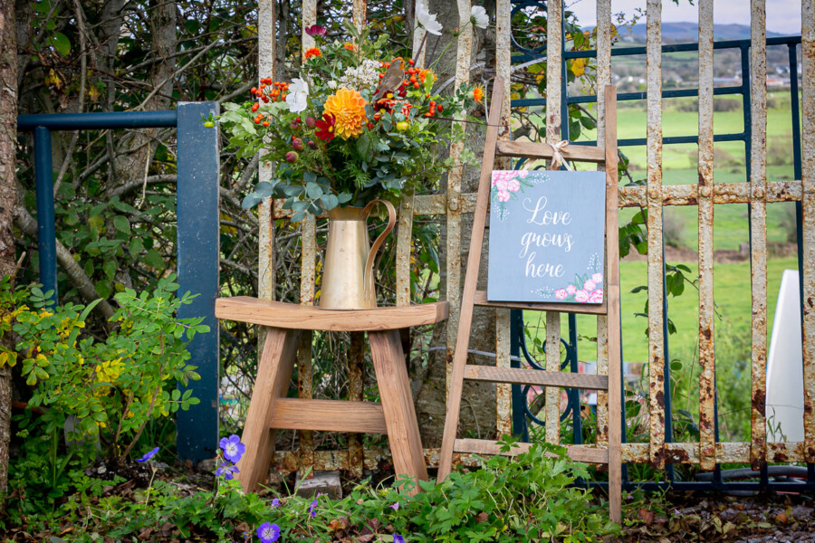 corporate photography ciara o'donnell, maura's cottage flowers